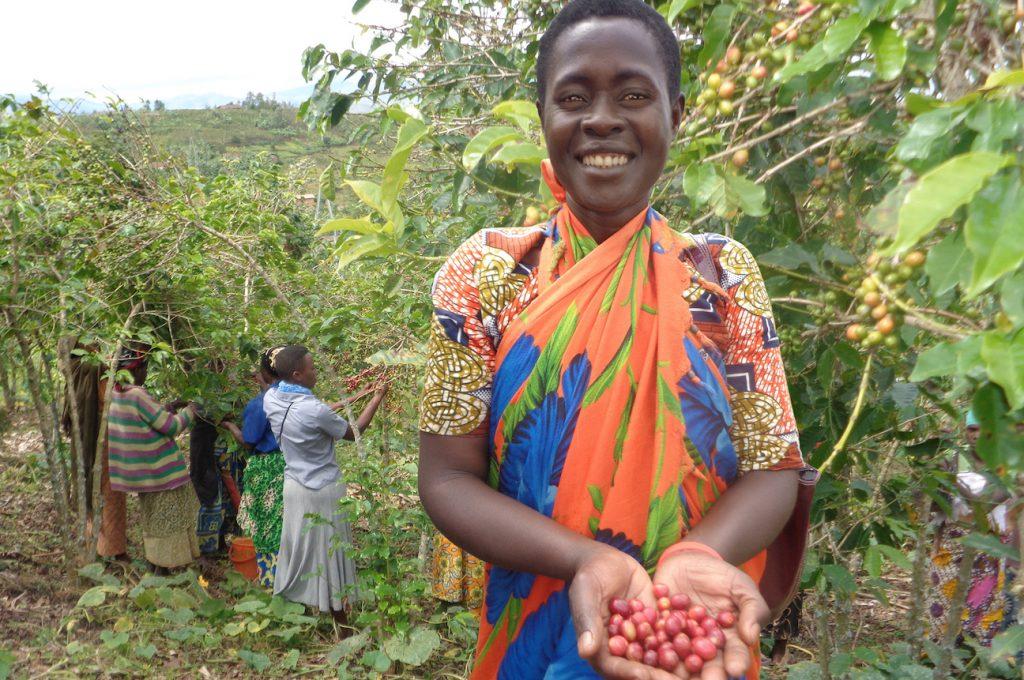 Photo of coffee farming in Rwanda - women of the Ejo Heza co-op